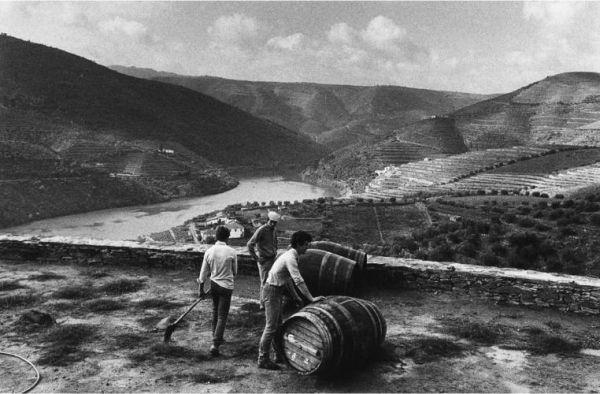 Cantina per viaggiatori nella diga incompiuta di Foz Côa