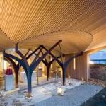 Cappella di S. Alberto Magno: il dialogo della fede con la natura