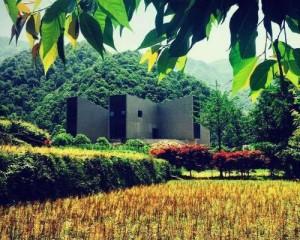 Duao Art Museum Ningbo, un ponte tra arte e natura