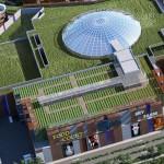 I Giardini di Myplant: realizzazione di un orto giardino