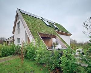 Arricchire il tetto giardino: la qualità delle finestre FAKRO