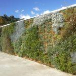 Sistemi per pareti e facciate verdi Perliwall®