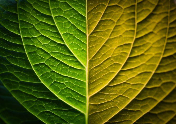 Non solo architettura sostenibile: si parla di Eco Design
