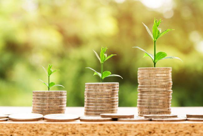 lo sviluppo della bio economia