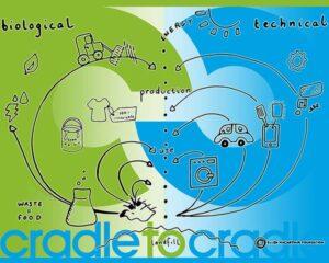 """Economia circolare """"Cradle to Cradle"""" (dalla culla alla culla)"""