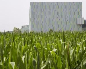 Fili d'erba, il magazzino hi-tech dai richiami naturalistici