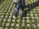 Lunix, modulo drenante per pavimentazione da esterno