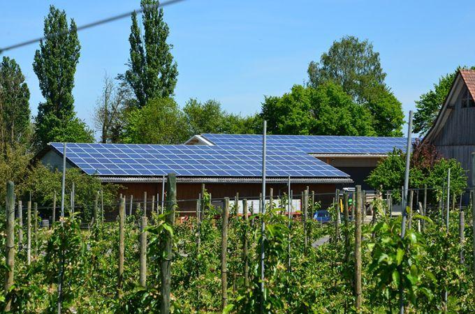 L'opportunità del fotovoltaico in agricoltura per centrare gli obiettivi 2030