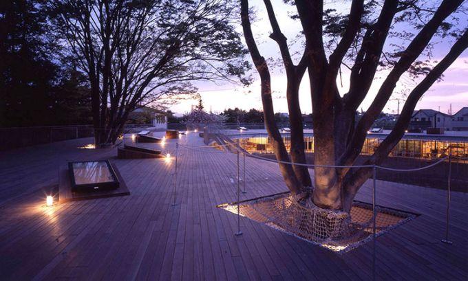 Il Fuji Kindergarten preserva gli alberi esistenti con delle apposite reti