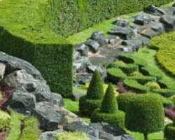 Master in Garden Design 1