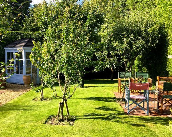 Come si trasforma il giardino in estate