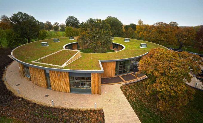 Come si costruisce un tetto verde