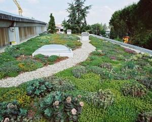 Tetti verdi, cosa sono e che vantaggi offrono