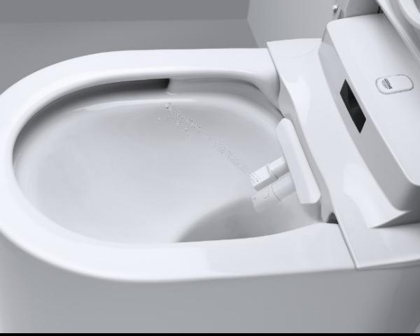 Grohe sensia arena wc con bidet integrato for Wc con bidet
