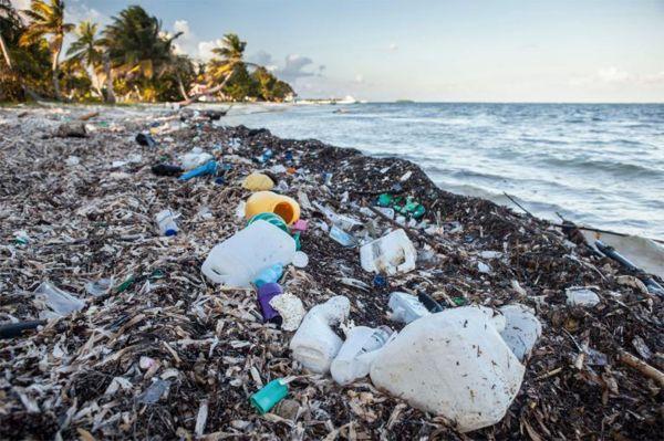 L'inquinamento dovuto alla plastica raggiunge livelli sempre più preoccupanti