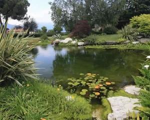 Bacini d'acqua artificiali: raccolta acqua piovane e biolaghi