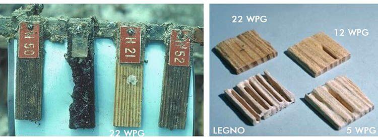 esempio durabilità legno Accoya