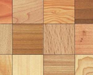 Specie legnose usate in edilizia. Guida alla scelta del legname da costruzione