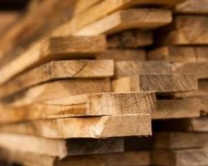 Segno + per le tecnologie per la lavorazione del legno