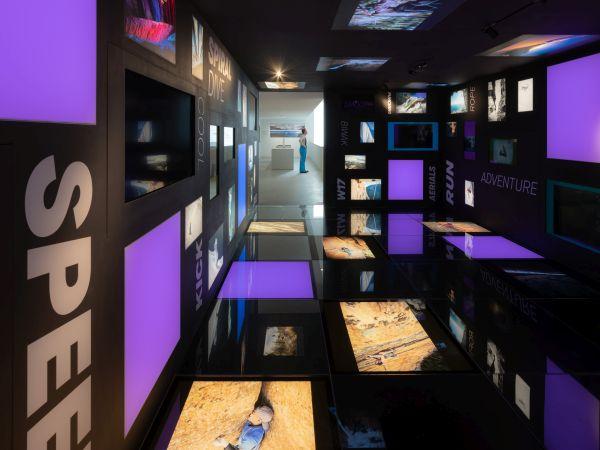 Lumen Museum, Adrenalina