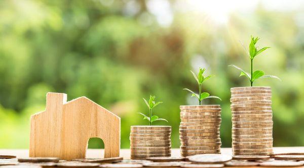 Dalla plastic tax al cash-less, l'ecologia e l'economia per la fioritura del Green deal italiano