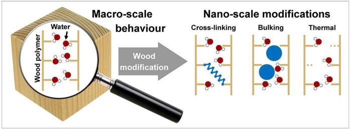 Effetti della modifica chimica del legno