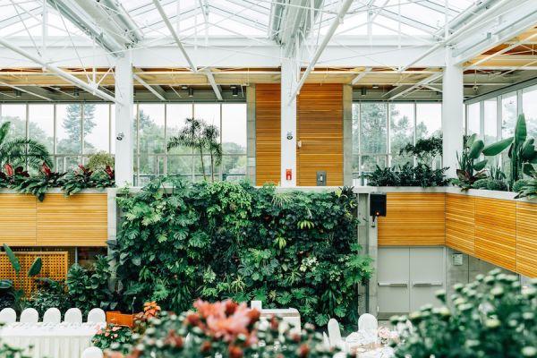 Incentivi per la realizzazione di pareti e facciate verdi