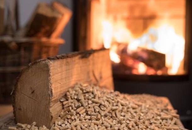 I vantaggi della biomassa legnosa