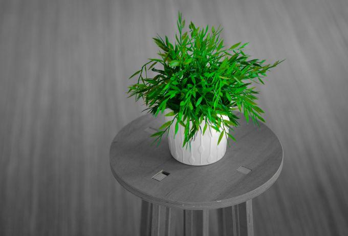 Design green: progettare rispettando l'ambiente