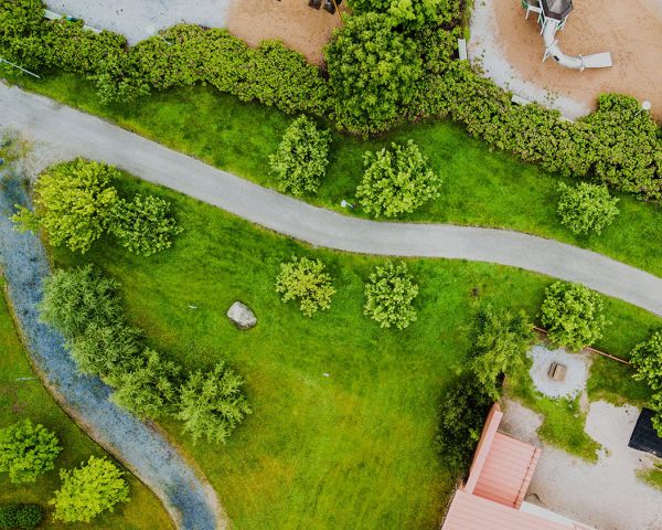 Giardini e aree verdi: progettazione, tipologie e costi