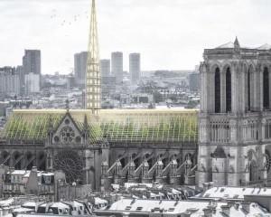 Notre Dame potrebbe ospitare una serra educativa e un apiario