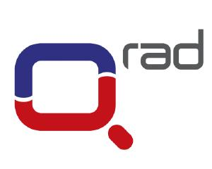 Q-DAY Expert Forum: Focus sul radiante 2013