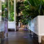 Design e botanica insieme per ripulire l'aria in modo green