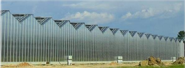 Esempio di serra realizzata con lastre corrugate del tipo Macrolux® Rooflite®.