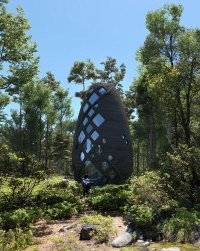 """Tera, una casa """"spaziale"""" nei boschi di New York"""