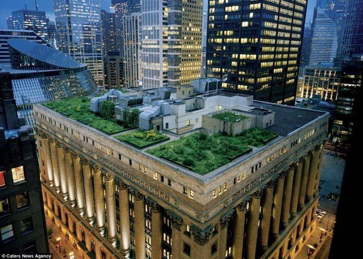 tetti-giardino