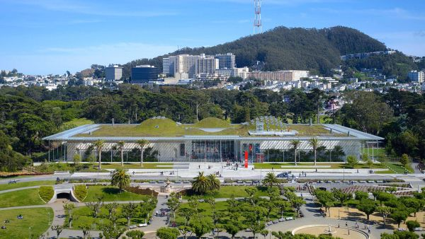 Il tetto verde del California Academy of Science
