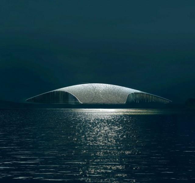 The Whale: l'attrazione turistica a forma di pinna di balena