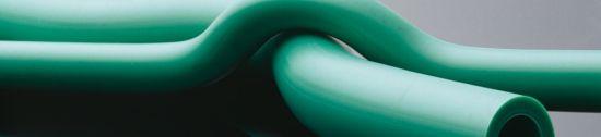 tigris_green