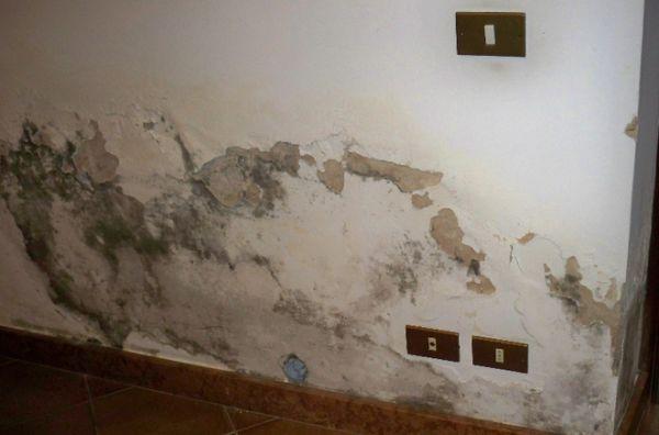 Come sconfiggere l umidit e la muffa le cause e gli interventi - Come ridurre l umidita in casa ...