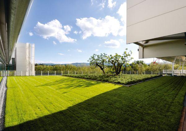 Particolare verde che caratterizza la nuova sede del gruppo Prada di Valvigna, Arezzo.