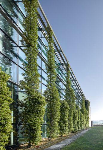 Il verde è l'elemento principale della nuova sede di Prada in provincia di Arezzo