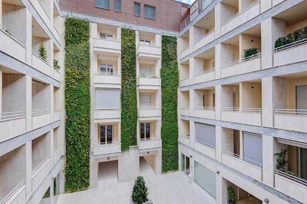 Vegetazione in facciata