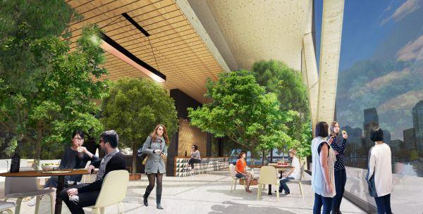 Vegetazione e luce naturale: i valori aggiunti del grattacielo in legno di Rotterdam